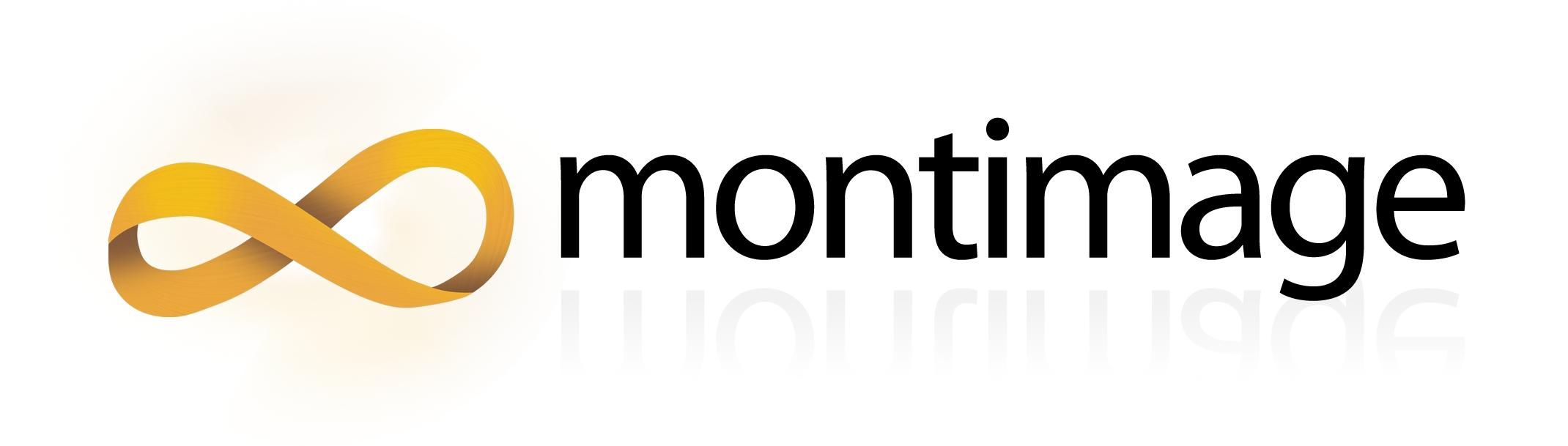 Montimage Logo